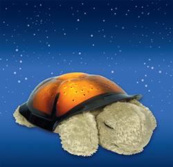 Project the night sky in your child's bedroom for a magical, tranquil