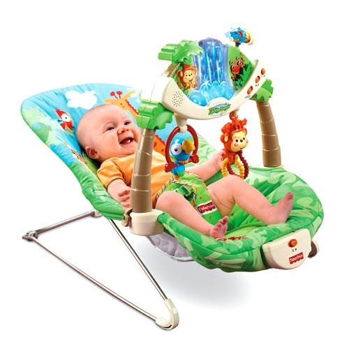 Amazon.com: Fisher-Price Rainforest Bouncer (Discontinued