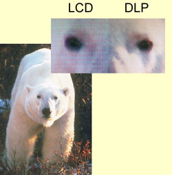 Detail of resolution comparison between LCD and DLP