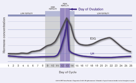 High and Peak Fertility Chart
