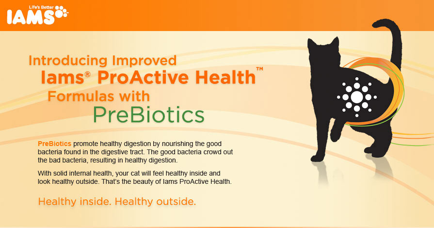 Iams ProActive Health with Prebiotics