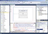 Visual Studio 2010 Professional Code Editor