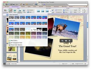 PowerPoint 2011 for Mac Photo Editing