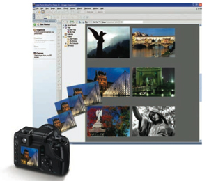 The Organizer is a one-stop photo management center.