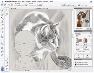 painter 4 ess 5 th Corel Painter Essentials 4 (Win/Mac) [OLD VERSION]