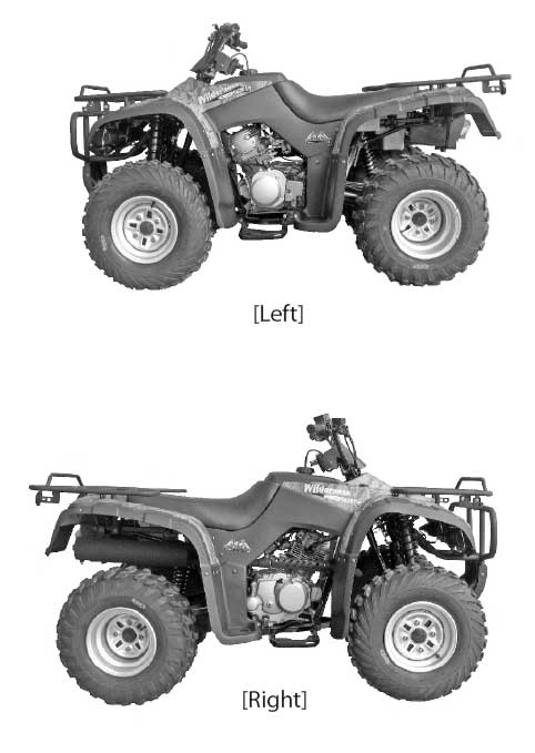 chinese 110cc atv engine diagram get free image about