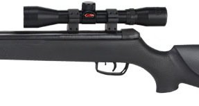 Amazon.com : Gamo 6110065654 Big Cat 1250 .177 Caliber Air Rifle with