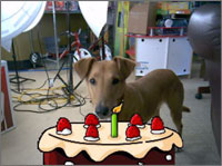 Movie Magic Digicam - Jake with a Birthday Cake