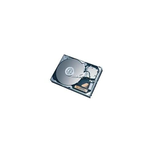 6Y160M0 160GB Maxtor Diamondmax Plus 9 Hard Drive 6Y160M0