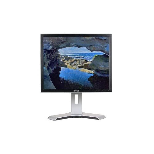 19 Inch Dell 1908FPT DVI Blu-Ray Rotating LCD Monitor W/usb 2.0 Hub And Hdcp Sup