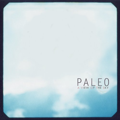 A View Of The Sky On Vinyl Record By Paleo