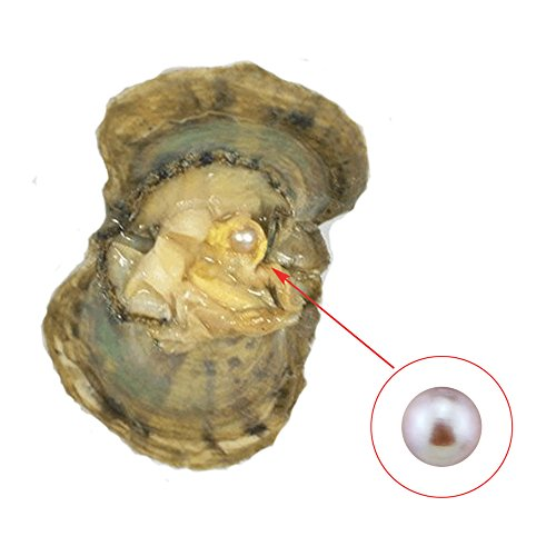 how to tell if an oyster has a black pearl