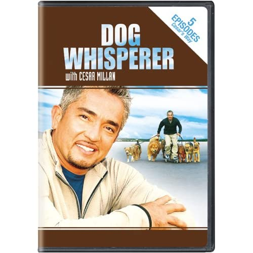 Image 0 of Dog Whisperer With Cesar Millan Stories From Cesar's Way On DVD TV Shows