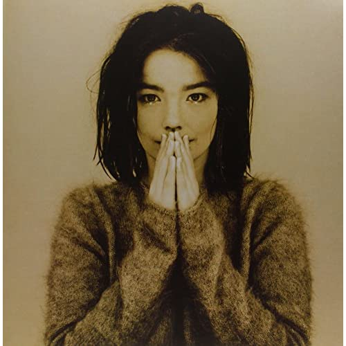 Debut Vinyl Record by Bjork On Vinyl Record LP