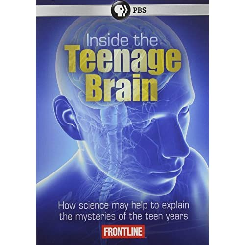the teenage brain Teenagers and young adults think and act differently from grownups cu scientist marie banich is helping us see why.