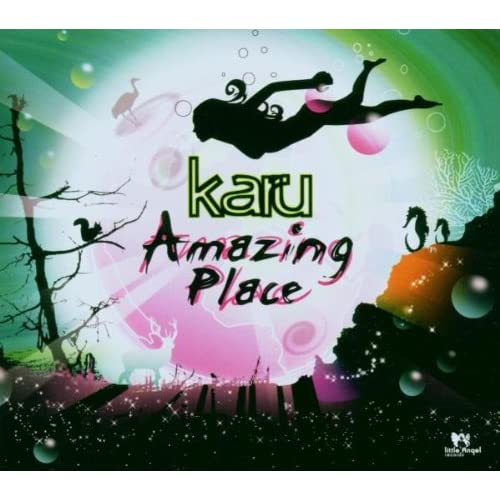 Amazing Place By Karu On Audio CD Dance & Electronica