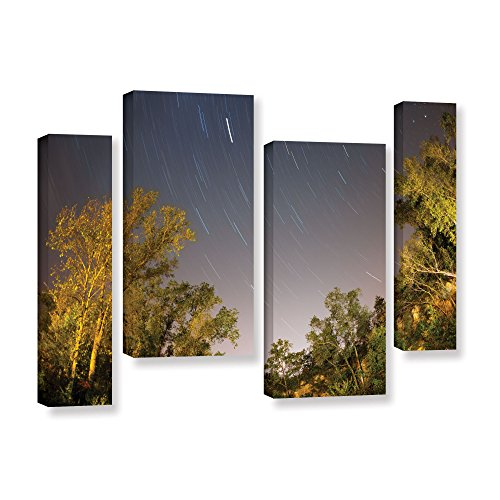 Artwall 4-piece Cody York's Star Trails Gallery-Wrapped Canvas