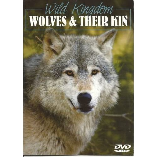 Image 0 of BBC Wild Kingdom Wolves And Their Kin On DVD With Explore The Wide Range Of Habi