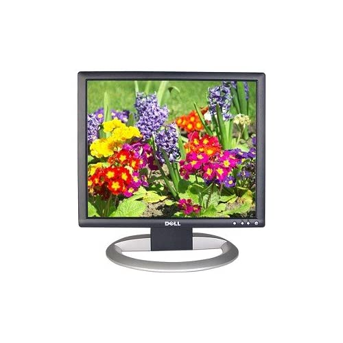 Dell Ultrasharp 1704FPVT 17 Inch Flat Panel LCD Monitor 1704FPVT 1704FPVt