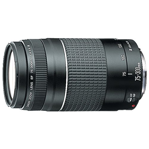 Canon Ef 75-300MM F/4-5.6 III Telephoto Zoom Lens For Canon SLR Cameras Micro-Ty