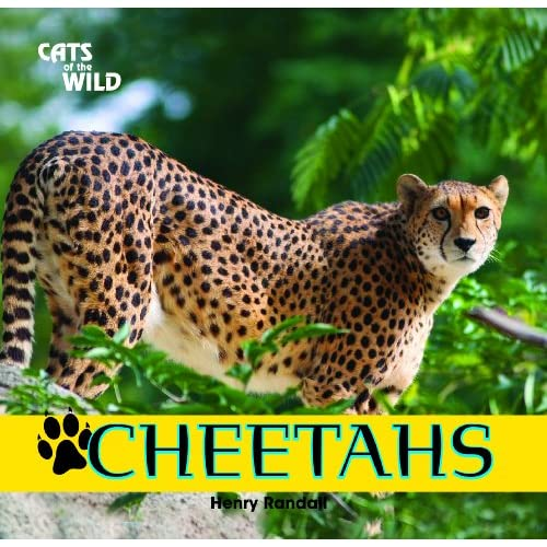 Cheetahs Cats Of The Wild Library By Henry Randall Book