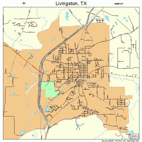 Street and Road Map of Livingston, Texas