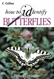 How to Identify Butterflies
