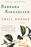 Small Wonder - book cover picture