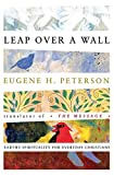 Leap Over a Wall : Earthy Spirituality for Everyday Christians - book cover picture