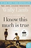 Book Cover: I Know This Much Is True By Wally Lamb