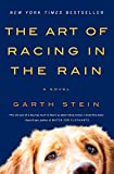 Book Cover: The Art Of Racing In The Rain: A Novel by Garth Stein