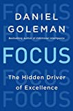Buy Focus: The Hidden Driver of Excellence from Amazon