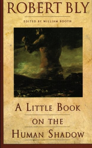 A Little Book on the Human Shadow, Robert Bly