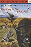 Cover image of One Day in the Prairie