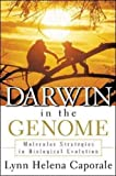Darwin In the Genome: Molecular Strategies in Biological Evolution