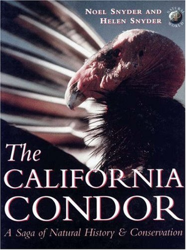 The California Condor:  A Saga of Natural History and Conservation (Academic Press Natural World), Snyder, Noel F. R.; Snyder, Helen