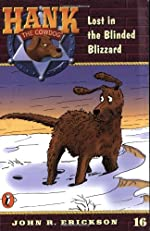 The Case of the Blinded Blizzard
