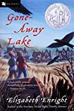Gone-Away Lake (Gone-Away Lake Books (Paperback)) - book cover picture