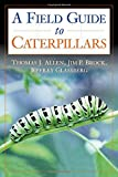 A Field Guide to Caterpillars