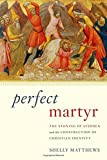 Perfect Martyr: The Stoning of Stephen and the Construction of Christian Identity book cover