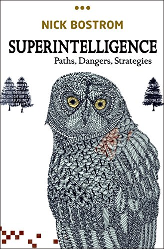 Superintelligence: Paths, Dangers, Strategies Book Cover Picture