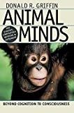 Animal Minds