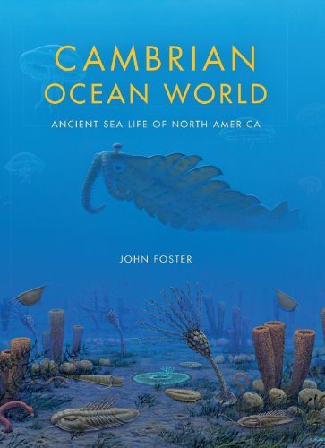 Cambrian Ocean World: Ancient Sea Life of North America (Life of the Past) - John Foster