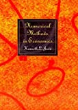 Numerical Methods in Economics