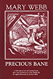 Precious Bane - book cover picture
