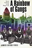 Rainbow of Gangs: Street Cultures in the Mega-City
