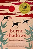 Cover Image of Burnt Shadows: A Novel by Kamila Shamsie published by Picador