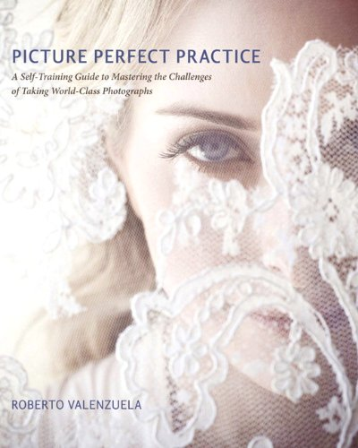 Picture Perfect Practice: A Self-Training Guide to Mastering the Challenges of Taking World-Class Photographs (Voices That Matter) - Roberto Valenzuela