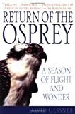 Return of the Osprey : A Season of Flight and Wonder