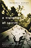 A Visitation of Spirits : A Novel (Vintage Contemporaries) - book cover picture